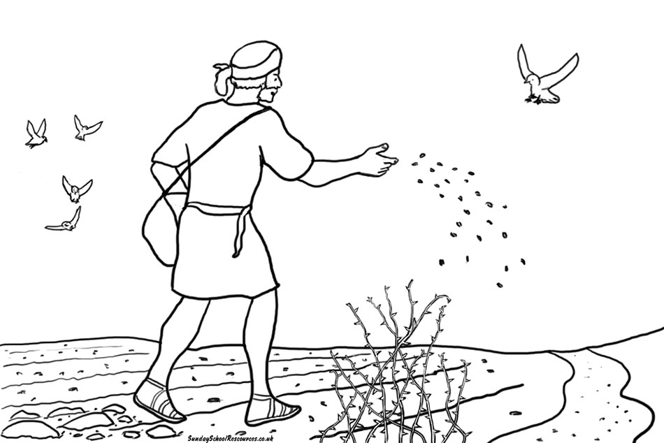 seed coloring pages - photo#37